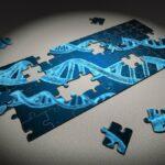 Datenschutz und Puzzles