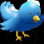 Ist Twitter für registrierte User datenschutzkonform nutzbar?